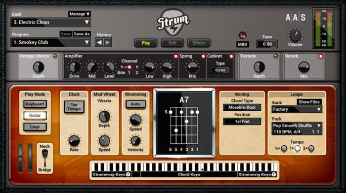 STRUM GS 2.3.3 (Win Mac)