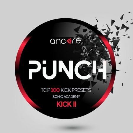 Punch For SONiC ACADEMY KiCK 2-DISCOVER