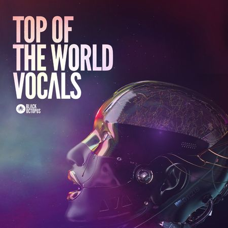 Top Of The World Vocals MULTiFORMAT-FLARE