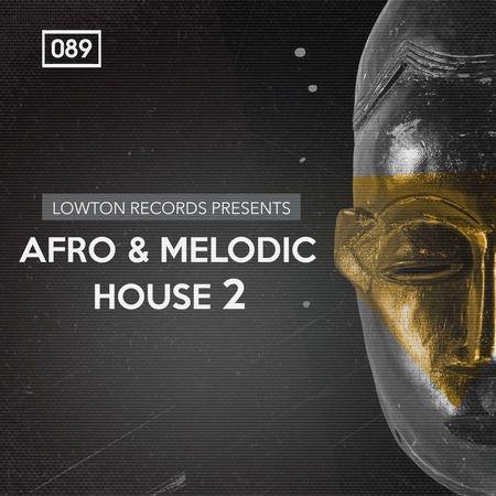 Afro And Melodic House 2 MULTiFORMAT-DISCOVER