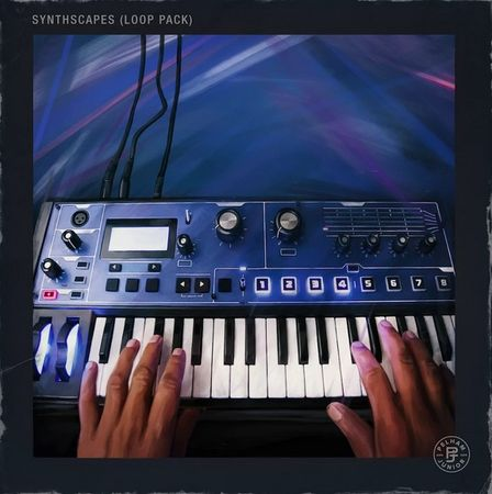 Synthscapes Loop Pack (Stems) WAV
