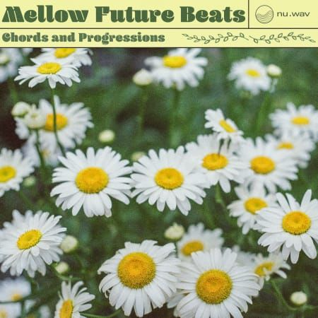 Mellow Future Beats Wav