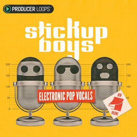 Stick Up Boys Vol 4 MULTiFORMAT