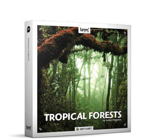 tropical forests surround edition wav