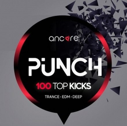 PUNCH 100 Top Kicks WAV-DISCOVER