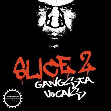 DJ Sykopath Slice Vol.2 Gangsta Vocals WAV KONTAKT