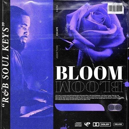 BLOOM RnB Soul Keys WAV-FLARE