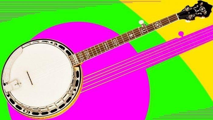 Beginner 5 String Banjo - Learn Banjo From Scratch TUTORiAL
