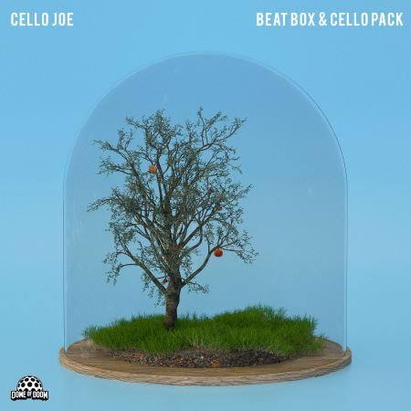 Cello Joe Beatbox And Cello Pack WAV-FLARE
