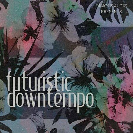 Futuristic Downtempo WAV-DISCOVER