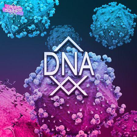 DNA MULTiFORMAT-DECiBEL