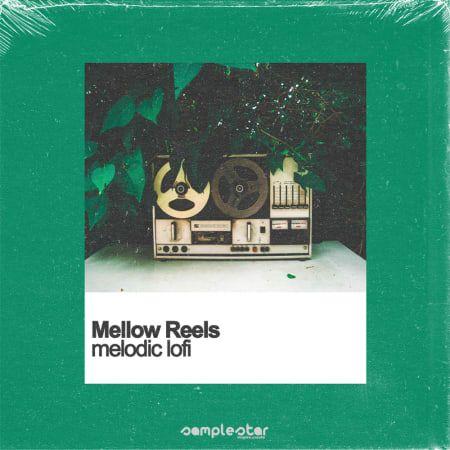 Mellow Reels Melodic Lofi WAV-FLARE