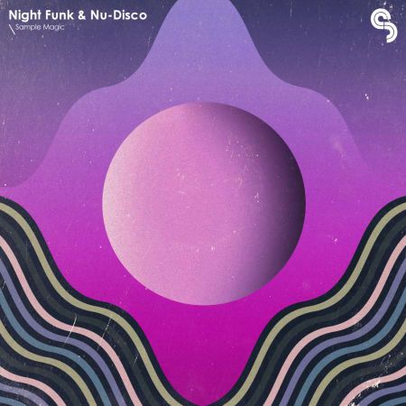 Night Funk And Nu Disco MULTiFORMAT-FLARE