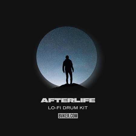 Afterlife Lo-Fi Drum Kit MULTiFORMAT-FLARE