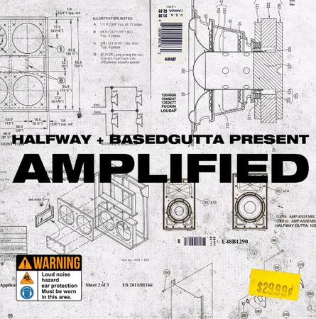 Amplified Vol. 9 (ElectraX Bank)-FANTASTiC