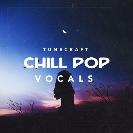 Chill Pop Vocals MULTiFORMAT-FLARE