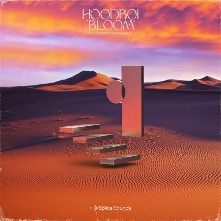 Hoodboi Bloom Vol 1WAV MIDI -FLARE