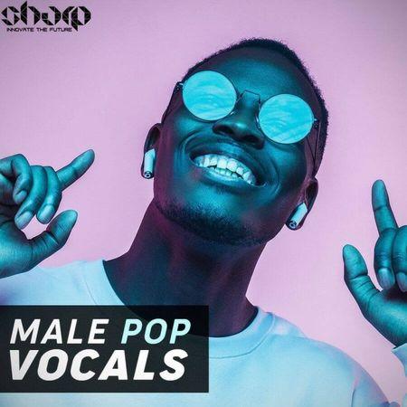 Male Pop Vocals Wav