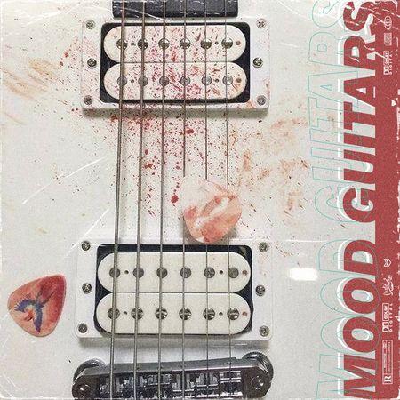Mood Guitars WAV-FLARE