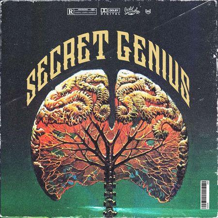 Secret Genius MULTiFORMAT-FLARE