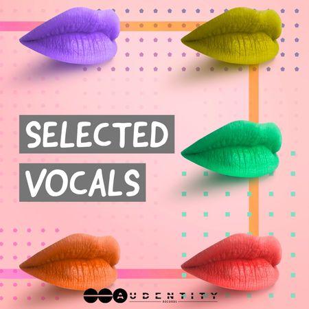 Selected Vocals WAV-FLARE