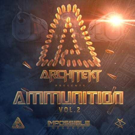 Ammunition Vol. 2 MULTiFORMAT-FLARE