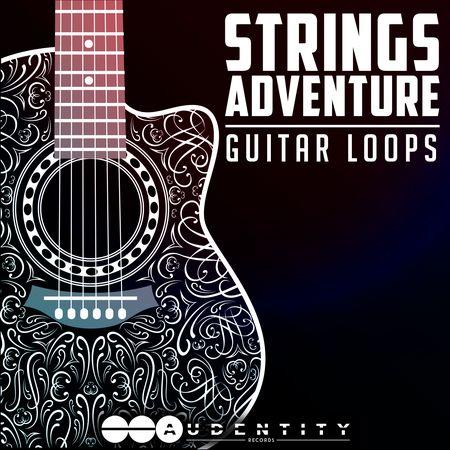Strings, Adventure, WAV, DECiBEL, Audio, samples, loops, MAGESY, Magesy®, Magesy Pro, magesypro