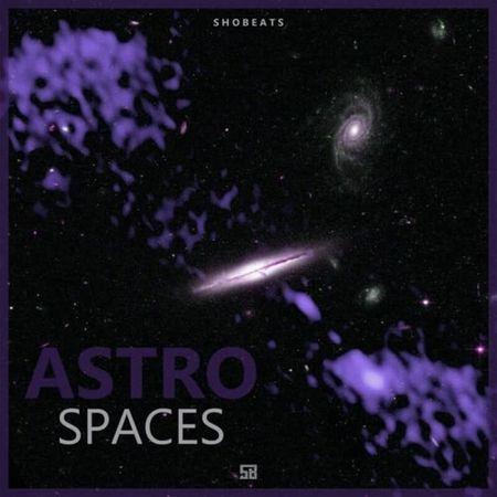 Astro Spaces MULTiFORMAT-DECiBEL