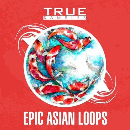Epic Asian Loops WAV MiDi-DISCOVER