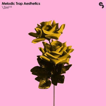 Melodic Trap Aesthetics -FLARE