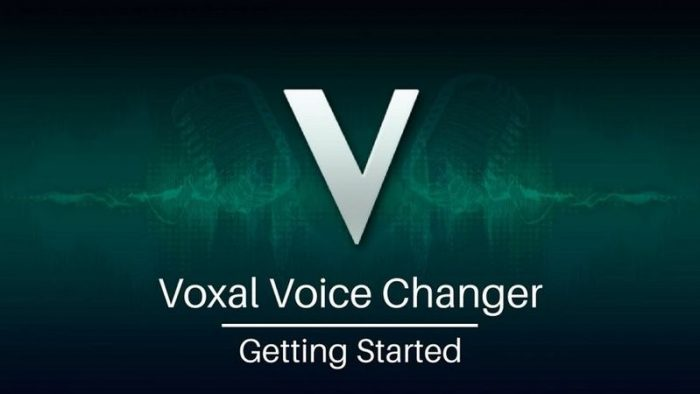 Voxal Voice Changer Plus 6 WIN
