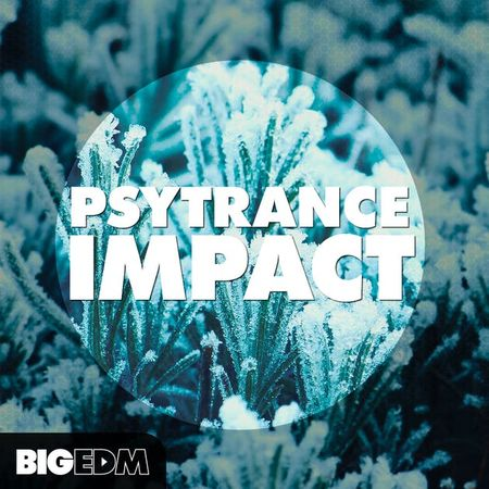 Psytrance, Impact, MULTiFORMAT, Audio, samples, loops, presets, MIDI, akai, MAGESY, Magesy®, Magesy Pro, magesypro