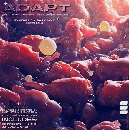 Adapt Sound Kit Vol 1 MULTiFORMAT