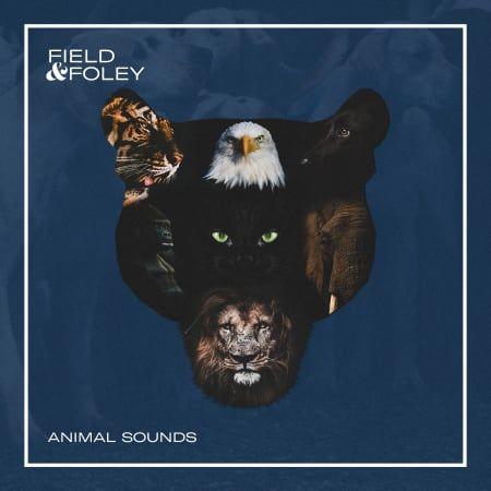 animal sounds wav fantastic