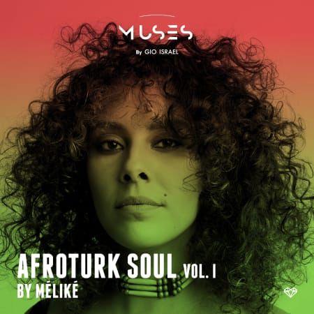 afroturk soul wav fantastic